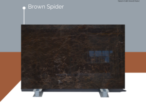 Brown-Spider